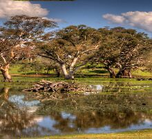And his Ghost Maybe Heard, Harden NSW, Australia  (25 Exposure HDR Pano) - The HDR Experience               by Philip Johnson