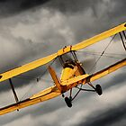 Tiger Moth climbing by naemick