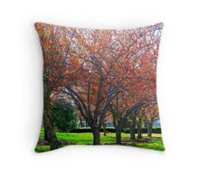It's Spring in New York City!  Throw Pillow