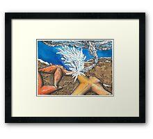 Brinicle Framed Print