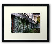 That View Framed Print