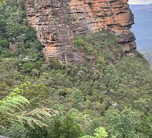 Blue Mountains Escarpment, Leura, NSW by Adrian Paul