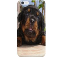 Paws for Thought: Rottweiler Puppy. iPhone Case/Skin