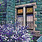 Windows At Lambert Castle in HSL, Paterson, NJ by Jane Neill-Hancock