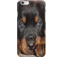 How Low Can You Go iPhone Case/Skin