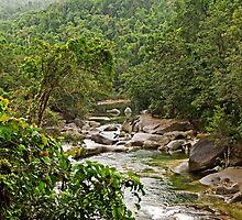 Wooroonooran Rainforest - Babinda Creek by TonyCrehan