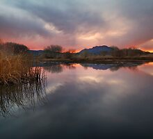 Hush by Bob Larson