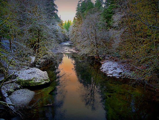 Snow and Dim Light by Charles & Patricia   Harkins ~ Picture Oregon