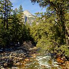 Merced River & Full Dome by Harry Oldmeadow