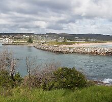 Bermagui harbour panorama by Roger Neal