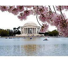 Blossoms Over Jefferson Photographic Print