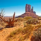 Left Mitten, Monument Valley by Stephen Knowles