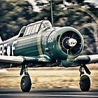 CAC Wirraway by naemick