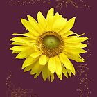 Sunflower by Anne Bonner