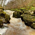 The Strid, Wharfedale by Mat Robinson