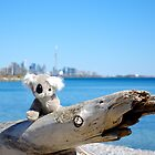 Enjoying The Toronto Skyline by Jeannie  Mazur