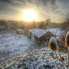 Country Snow And Sunrise by Yhun Suarez
