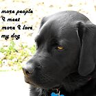 The Labrador Retriever Calendar by trish725