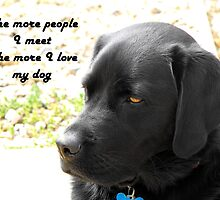 The More People I Meet the More I Love My Dog by trish725
