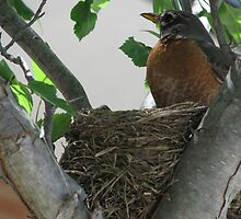 Proud Momma June 6, 2009 by Ron Russell