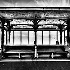 Brighton bus stop by willoughby