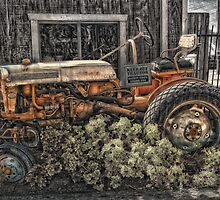 Retired old Farmall by art1975