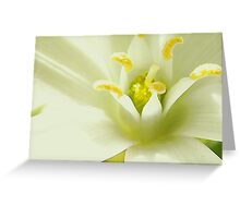 """A hint of Yellow"" Greeting Card"