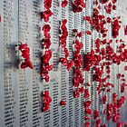 Honour Wall Canberra by Trevor Middleton