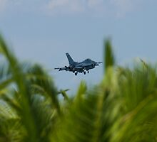 FM AF 86 0307 F-16C Fighting Falcon In the Palms by Henry Plumley