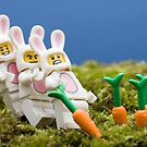 Lego Bunnies by Kevin  Poulton - aka &#x27;Sad Old Biker&#x27;