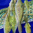 Animal Skins: Scrawled Filefish by Jedro
