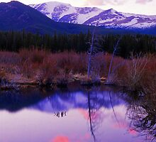 BEAVER POND,SUNSET by Chuck Wickham