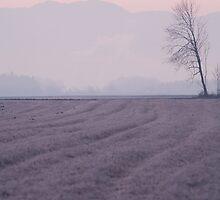 Gorenjska sunrise by Ian Middleton