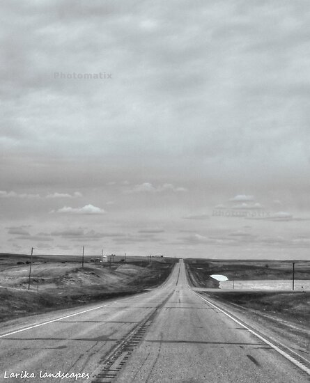 A remote road to nowhere by Erika Price