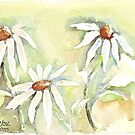 Shasta Daisies by Maree Clarkson