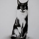 Black and white cat by Peter Lawton