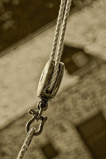 Rope and Pulley by Catherine Hamilton-Veal  ©