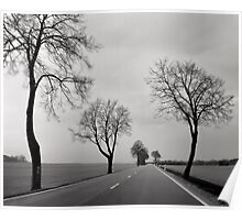 Road Through Windy Fields Poster