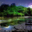 Magic Night © by Dawn M. Becker