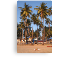 Palm Lined Beach Palolem Canvas Print