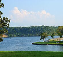 Relaxing along the Tennessee River... by Ruth Lambert