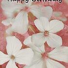 Happy Birthday Card  5 by cardsforyou