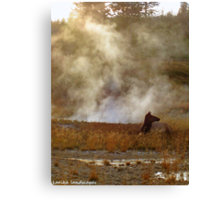 Basking in the warmth Canvas Print
