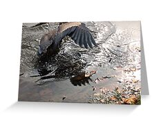 Fishing Is Hard Work, Great Blue Heron in Action Greeting Card