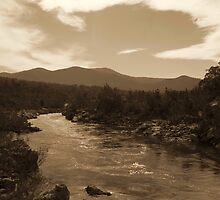 Snowy River NSW - Sepia Toned HDR by Matt  Carlyon