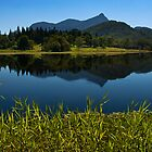 Mt Warning Reflection by dbax