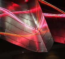 Neon, Disney Concert Hall, Frank Gehry by Jane McDougall