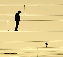 Balancing on wires by Sofia Wrangsjo