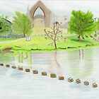 Bolton Abbey by BAVVY