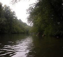 """""""The Chestatee River by mls0606"""